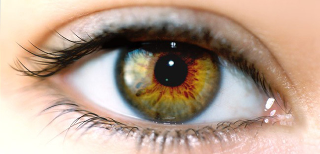 La pupille de l'œil se dilate jusqu'à 45% quand vous regardez quelqu'un que vous aimez !