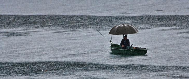 Il peut pleuvoir des poissons !
